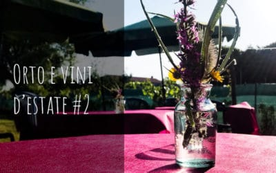 Orto e vini d'estate #2 Venerdì 24 Luglio 2020 ore 19:30